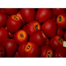 meyve sabunu kırmızı elma